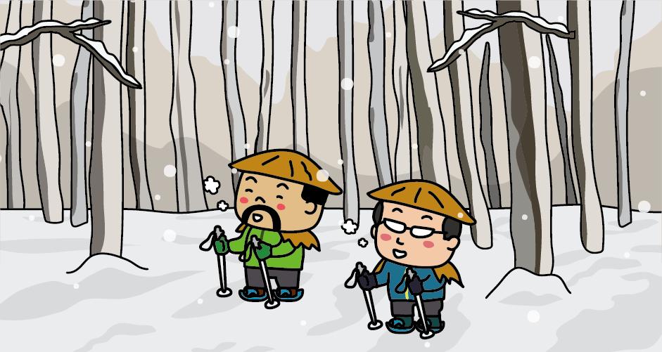 十日町 松之山 美人林 冬 スノーシュー