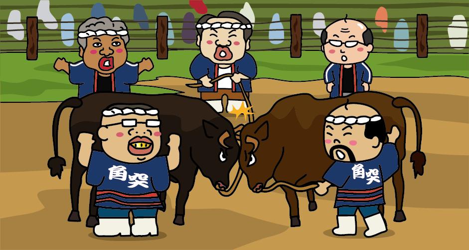牛の角突き 山古志 小千谷 勢子 闘牛場