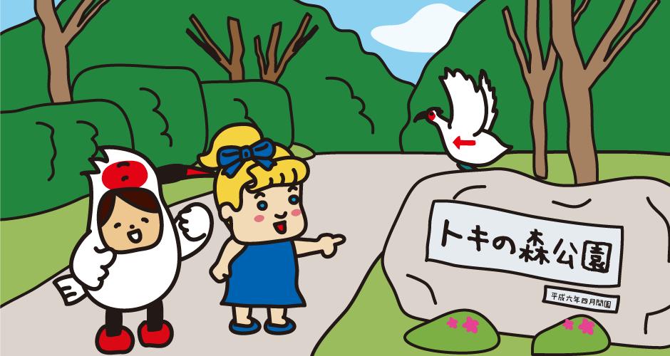 佐渡島 朱鷺 トキの森公園