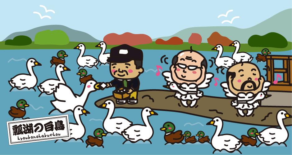 瓢湖の白鳥 白鳥おじさん