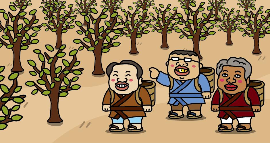 三湖伝説(八郎太郎伝説) マダの木